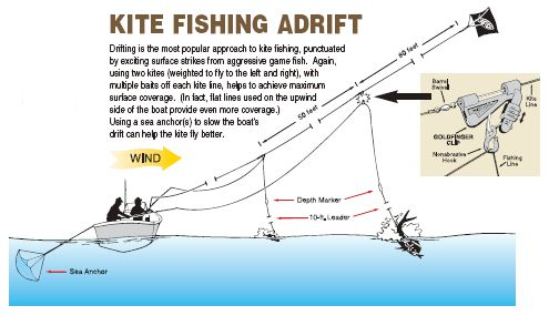 Aftco kite fishing live bait kits for Kite fishing for tuna