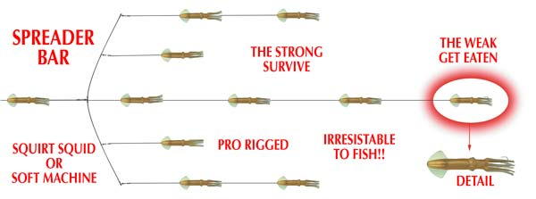 Your 1 source fore dredge teasers accessoires for Spreader bar fishing