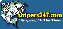 Stripers 247